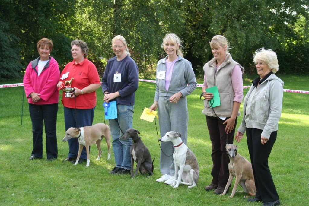 Obedience Line up photo